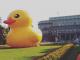 De badeend werd het symbool voor de protesten tegen het megalomale bouwproject Belgrado op water. De eend was zo succesvol dat Aleksej Navalny haar kopieerde voor zijn protest tegen corruptie in Rusland. (foto: Pavle Popov)